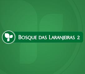 LOTEAMENTO RESIDENCIAL BOSQUE DAS LARANJEIRAS 2